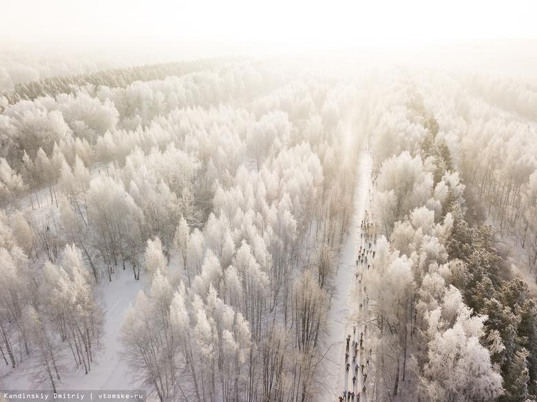 Томичей приглашают на выставку по мотивам сибирской зимы «Нимфа у фонтана ушла»