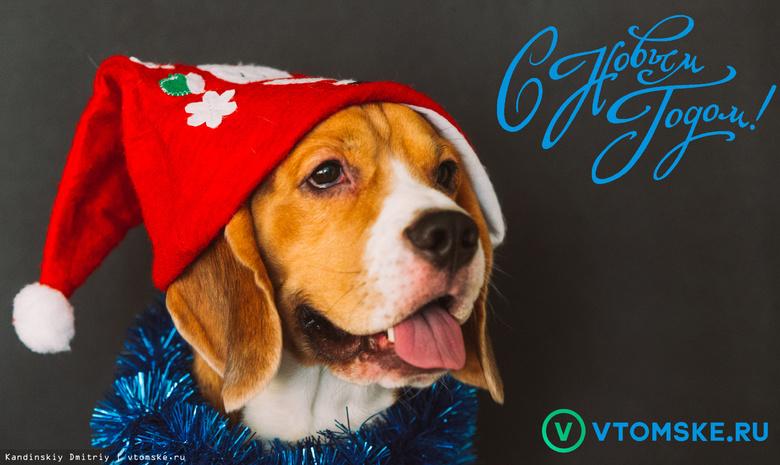 Всех читателей vtomske.ru — с Новым годом!