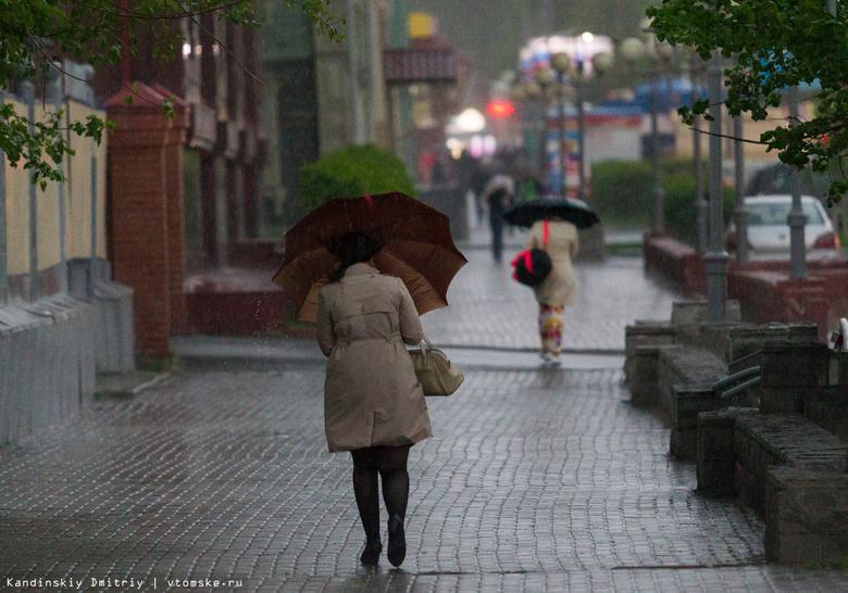 Жителей Томской области предупреждают о граде и порывах ветра до 20 м/с