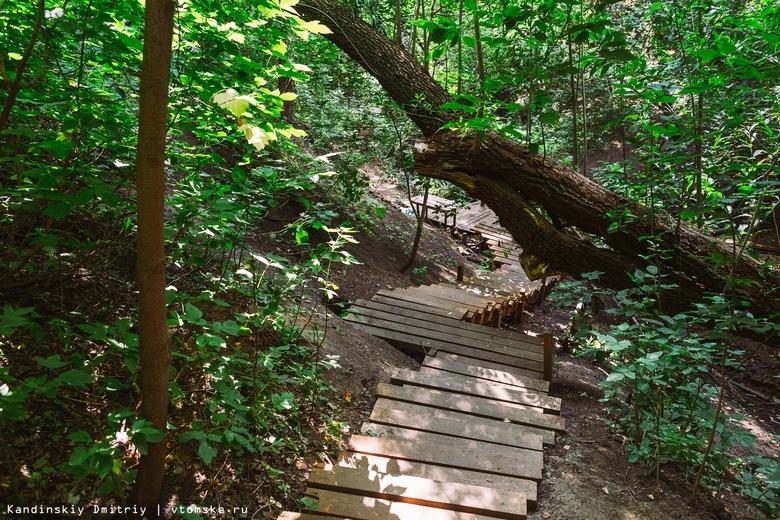 Экотропы, лестницы к родникам и арт-деревья