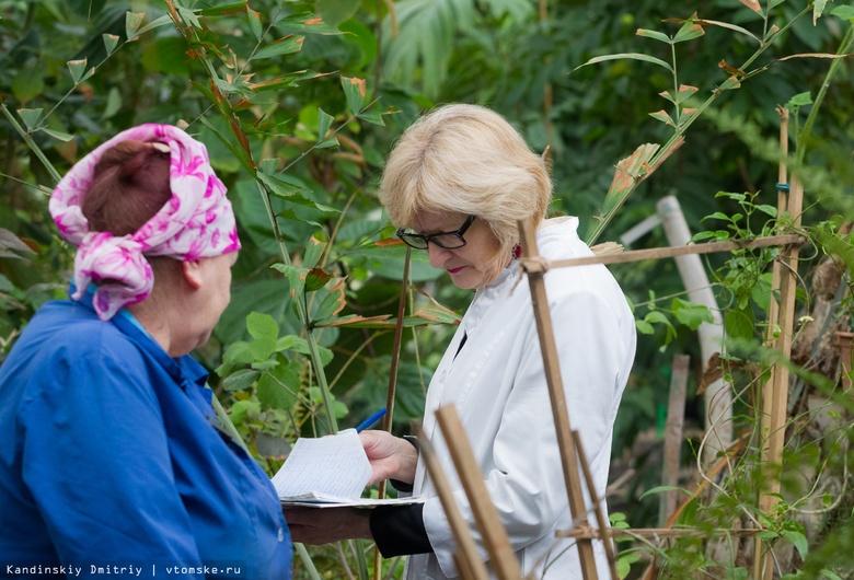 Ученые Томска исследуют влияние климата на растения с помощью ловушек для пыльцы