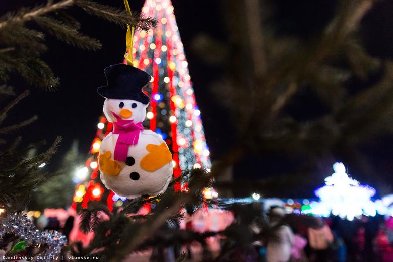 Новогодние огни зажглись на главной елке Томска