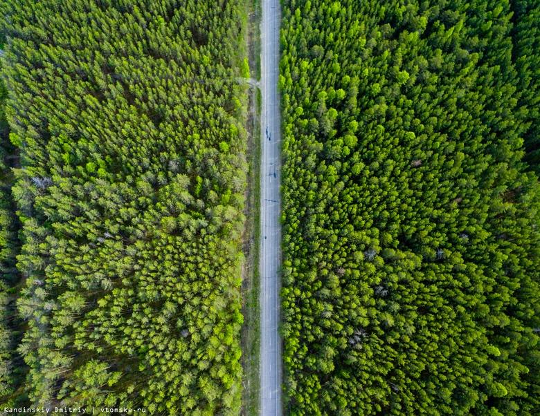 Более 6 км линий освещения установят в Томском и Шегарском районах