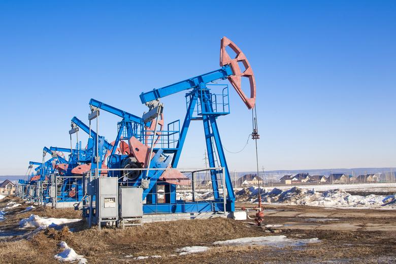 Томские ученые придумали, как спомощью свеклы добыть «трудную» нефть