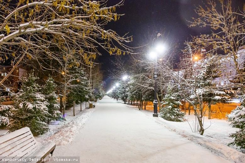 Синоптик: снегопад в Томске сменится похолоданием