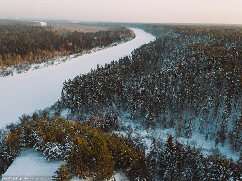 Власти расторгли договор аренды леса с компанией из Китая