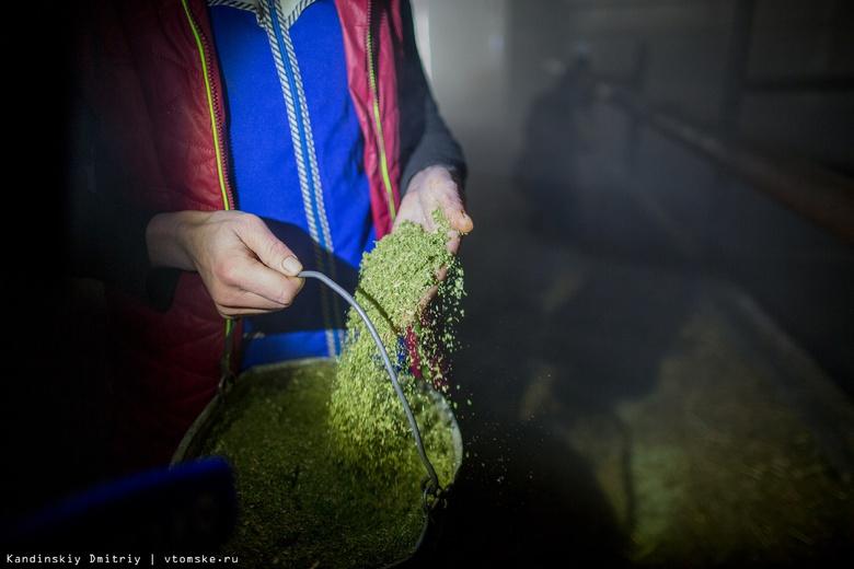 Более 2,5 тыс новогодних елей сдали томичи на витаминный корм буренкам