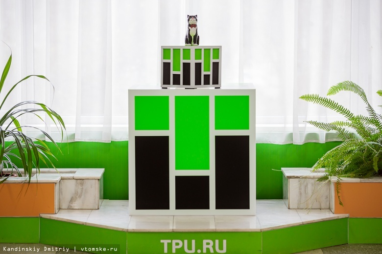 «Вася, с возвращением!»: в библиотеке ТПУ появился памятник коту, прожившему там 17 лет