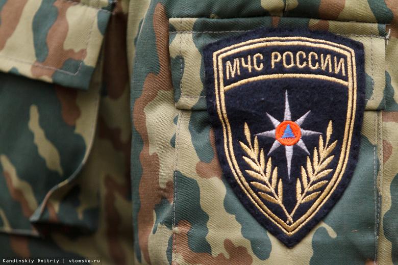 Тело мужчины обнаружено при тушении дома в селе Томской области