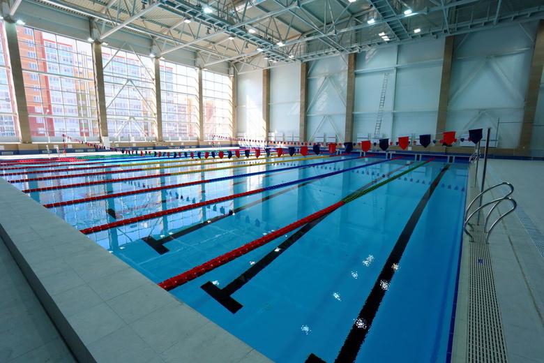Олимпийский бассейн в Зеленых Горках получил название «Звездный»
