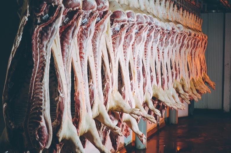 «Аграрная Группа» вошла в пятерку крупнейших российских производителей свинины